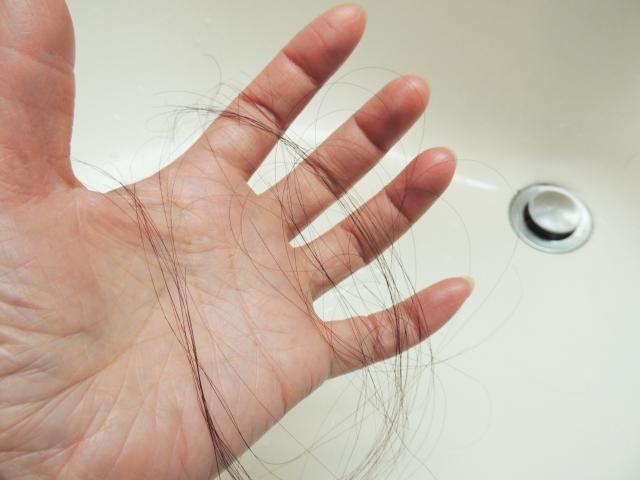 季節によって抜け毛の理由は違う?抜け毛を防ぐおすすめのケアを紹介