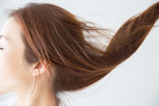 髪のパサつきの原因は?しっとり潤す保湿のポイント -美頭皮のすすめ-