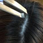 白髪を抜くと白髪が増える?抜かずにできる対策を紹介します! -美頭皮のすすめ-