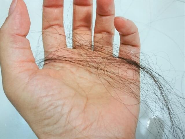 抜け毛に短い髪の毛が増えてきた…これは薄毛の前兆? -美頭皮のすすめ-