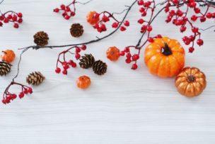 秋の抜け毛